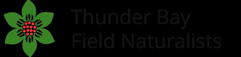 TBFN Logo
